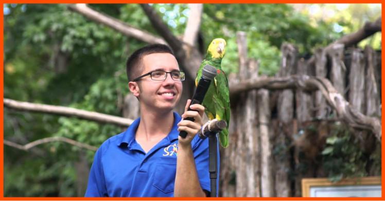 Parrot singing Old MacDonald Had a Farm at the Dallas Zoo